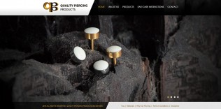 Website Design QPP